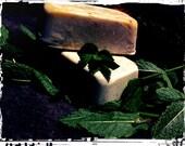 Vegan Cold Process Soap-Peppermint Tea