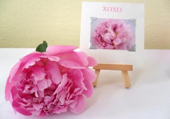 Daria floral photograph letterpress card