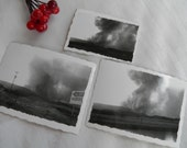 1949 Vintage Photos Black Hills Natural Disaster Forest Fire Vintage Real Place Photo Set of 3 Black and White Photographs