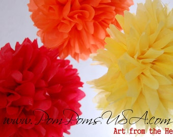 12 Tissue Pom Pom set - Different Sizes