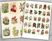 3 Printable Sheets - Vintage Flowers collection for scrapbooking, paper craft and decoupage - VINTAGE FLOWERS COLLECTION 2