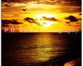 The Golden Sea and Sky of Cuba - Cayo Santa Maria, Cuba - 9 x 12 Fine Art Landscape Print Photography
