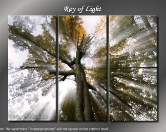 Framed Huge 3 Panel Sun Tree Rays of Light Giclee Canvas Print - Ready to Hang
