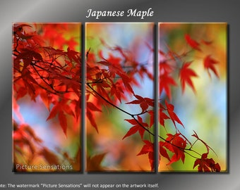 Framed Huge 3 Panel Modern Art Floral Japanese Maple Giclee Canvas Print - Ready to Hang