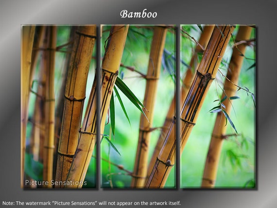 Framed Huge 3 Panel Modern Feng Shui Lucky Bamboo Giclee Canvas Print - Ready to Hang