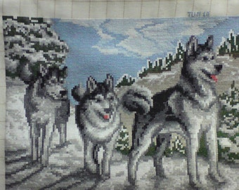 HUSKYS THREE abeautiful completed fine stitch picture