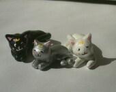 Sailor Moon Kitties
