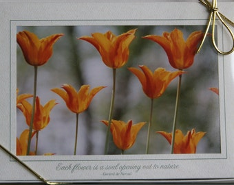 Set of 10 Tulip Cards