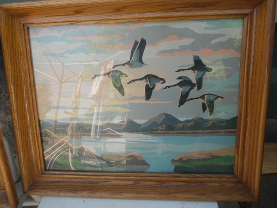 Paint by NUMBER Framed Set DUCKS and Canadian GEESE  Vintage Wildlife Nature Cottage Chic