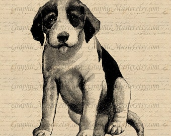 Puppy Vintage Clip Art Dog Digital Image Download Collage Sheet Iron On Transfer Fabric Clothing Pillows Totes Burlap Tea Towels An89
