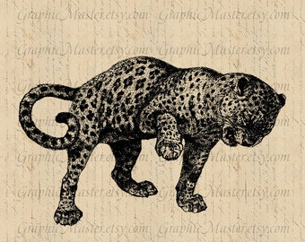 Leopard JPEG PNG Big Cat Digital Collage Sheet Image Instant Download Printable Graphics Iron On Transfer Fabric Totes Pillows Towels An145
