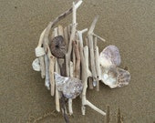 Driftwood Fish great for that Beach House look. Beach home decor with unique fun art for your walls