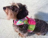 Crazy Quilt Dog Harness