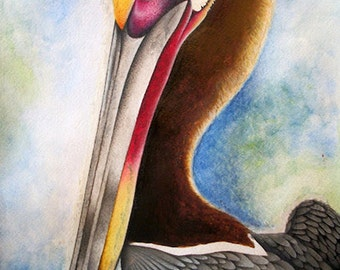 """Original watercolor pelican painting- fine art print- 5"""" x 7""""- Bird watercolor painting giclee- FREE SHIPPING"""