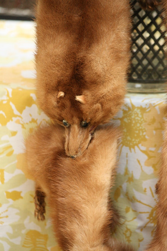 RESERVED Vintage Mink Fox Stole Scarf from I.J. Fox Cleveland Fur 1950s