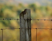 The Old Fence Post 8x10 Photo