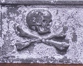 Argh me hearties - a gothic art greeting card - skull and crossbones fine art photo card - blank inside