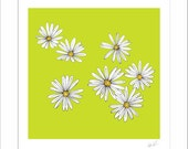 LIMITED EDITION PRINT and mount - Daisies
