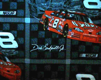 Hand Crafted Dale Jr. Number 8 Print Pillow