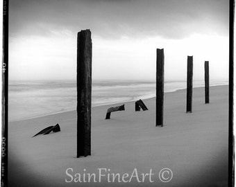 "Poles of Marineland - Black and White - Landscape - Fine Art Photography 8""X8"""