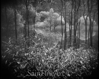 "Lake Fontana II - Black and White - Landscape - Fine Art Photography 8""X8"""