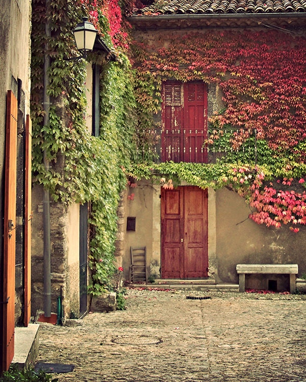 Autumn leaves in provence 8x10 art home decor flower vines for Provence homes