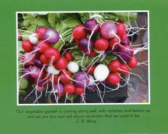 E.B. White quote - photo card