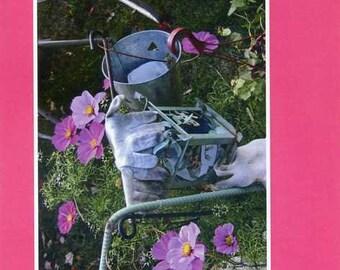 Sarah's garden - photo card