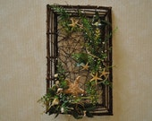 SALE - 20% OFF (with coupon code) Seashell and Starfish Frame-Shaped Wall Decor