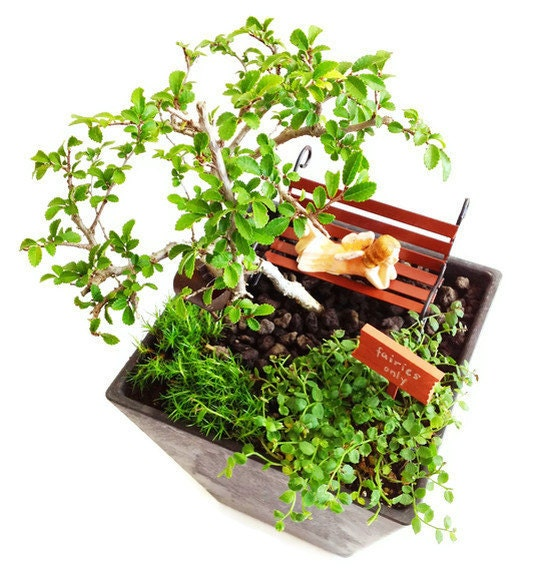 miniature fairy garden kit with fairy figurine
