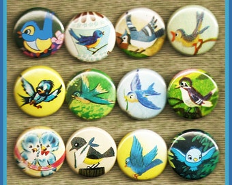 """12 beautiful BLUEBIRDS 1"""" inch buttons, medallions or magnets"""