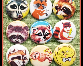 "9 adorable RACCOON 1"" inch buttons, medallions or magnets SET A"