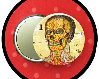 SKELETON and SKULL anatomy 2.25 inch pocket MIRROR, button or magnet 2 1/4 size