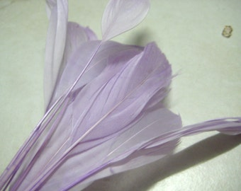 "Lilac Stripped Nagoire Goose Feathers 4""-6"", 10 feathers"