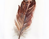 Watercolor painting-Original art-Feather painting by watercolor-Feather 3