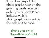 Prints of Photographs