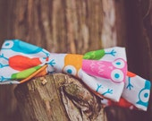 Colorful Boys Bowtie - Owls pink orange blue red toddler bow tie - Perfect for summer
