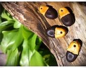 Eco Pendant Afzelia Xylocarpa Seed