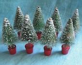 Bottlebrush Christmas Trees Mica Snow - 8