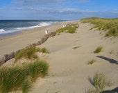 """Sand Dunes II, 7"""" x 5"""" print, fine art photography, summer, beach"""