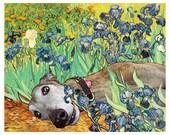 """Greyhound Art Print - """"Irises"""""""