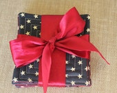 Handmade Americana, 4th of July, Red and Navy Blue Stars Fabric Coaster Set