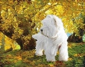 Beautiful canvas, signed print of the West Highland White Terrier, Sir Hamish McTavish 1G