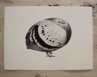 Eggpigeon Print