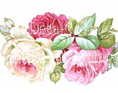 HUGE ROSE DECALS furniture size CoTTAGE shabby waterslide TRANSFERs chic CREATe YoUR OWn ArT
