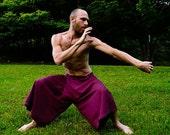 Kung Fu Pant