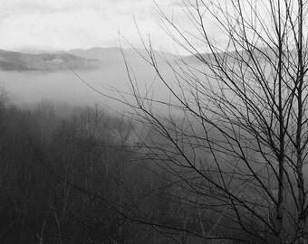 Smokey Morning.   Smokey Mountains Blue Ridge Black & White Nature Cherokee National Forest Del Rio, TN  Fine Art Photography 8x10