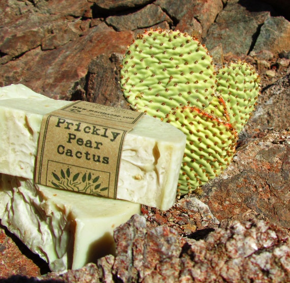 Prickly Pear Cactus Castile - 77% Olive Oil Soap