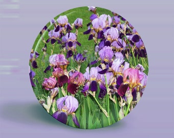 PHOTO Button Magnet - Irises In Full Bloom - OOAK - 2.25 Inch Round
