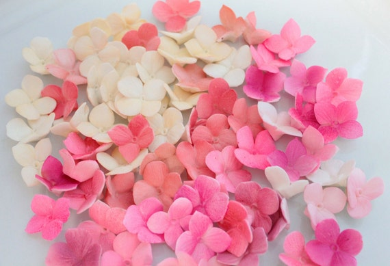 Fondant Hydrangea Petals Decoration 100 qty - ivory, coral pinks, magentas for cupcakes, wedding cakes, birthday cakes, cupcake topper